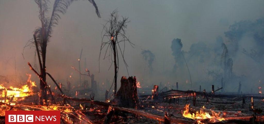 Como 'apropriação de terras por MP' pode mudar o mapa das regiões amazônicas